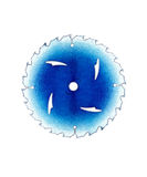 blå white för blad Royaltyfria Foton