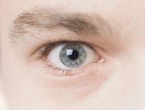 blåa ögon Royaltyfri Bild
