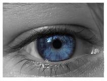 blåa ögon Royaltyfri Foto