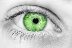Blåa ögon för insiktsfull blick Royaltyfri Foto