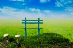 Blåa bänk och champinjoner på den gröna ängen på den soliga molniga dagen Arkivfoto