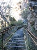 Blåa berg Sydney NSW Arkivfoto