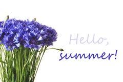 Blåa blåklinter som isoleras på vit bakgrund Hello sommarbokstäver arkivfoton
