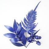 Blåa bladdesignbeståndsdelar Garneringbeståndsdelar för inbjudan, bröllopkort, valentindag, hälsningkort Isolerat på vita lodisar Arkivfoto