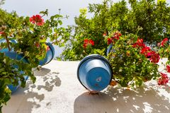 Blåa blomkrukor på en kalkad vägg fotografering för bildbyråer