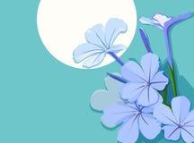 blåa blommor stock illustrationer
