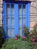 blåa blommor inramninde fönstret Royaltyfria Bilder