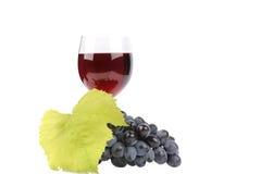 Blåa druvor med bladet och vin i exponeringsglaset arkivbild
