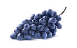 Blåa druvor samlar ihop inget blad som isoleras på vit bakgrund arkivfoto
