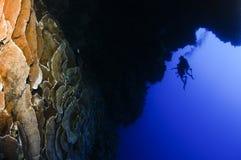 blåa dykare som undersöker hålet royaltyfri bild