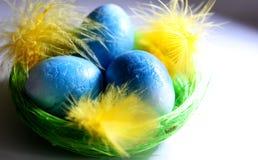 blåa easter ägg Arkivbild