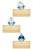 Blåa fåglar på trätecknet - Set 2 Arkivfoton