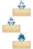 Blåa fåglar på trätecknet - Set 4 Fotografering för Bildbyråer