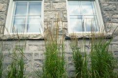 blåa fönster Arkivbilder