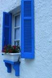 Blåa fönster och blommor i kruka Arkivbilder