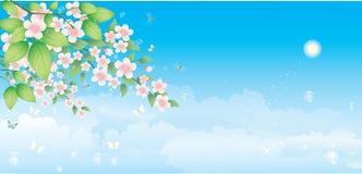 blåa filialblommor över skyen Royaltyfri Fotografi