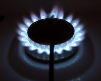 blåa flammor Royaltyfria Foton