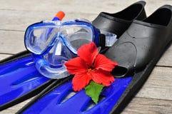 blåa flipper Royaltyfria Bilder