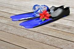 blåa flipper Arkivfoto