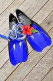 blåa flipper Arkivbilder