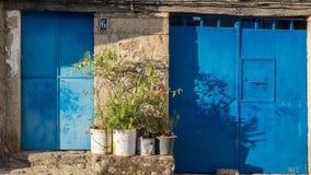 Blåa gamla metalldörrar Royaltyfri Fotografi