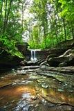 Blåa Hen Falls Cuyahoga Valley National parkerar Arkivfoto