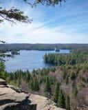 Blåa himlar över en blå sjö som förbiser gröna träd fotografering för bildbyråer