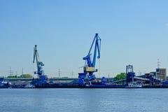 Blåa industriella kranar i hamnen av Ghent, Belgien Arkivfoton