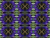 Blåa Iris Pattern Royaltyfria Bilder