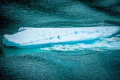 Blåa isberg och isstora bitar i vatten närliggande Alaska Royaltyfria Foton