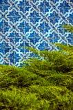 Blåa keramiska tegelplattor av gräsplan sörjer framme filialer royaltyfria foton