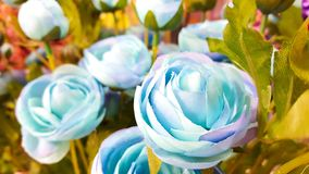 Blåa konstgjorda rosor för pastell Arkivfoto