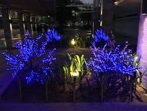 blåa lampor Royaltyfria Bilder
