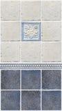 Blåa marmortegelplattor med blom- garneringar Royaltyfria Bilder