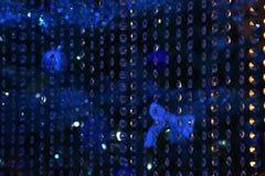 Blåa mousserande girlander av genomskinligt exponeringsglas Härlig festlig bakgrund, färgstänk, textur arkivbilder