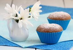 blåa muffiner Royaltyfri Foto