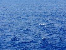 blåa naturliga havswaves för bakgrund Royaltyfria Bilder