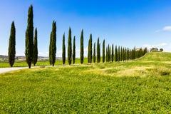 Blåa och gröna färger av våren i Italien Fotografering för Bildbyråer