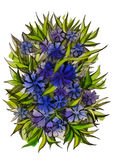 Blåa och purpurfärgade blåklinter och sidor Royaltyfria Bilder