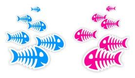 Blåa och rosa klistermärkear för fiskben Royaltyfri Fotografi