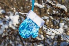 Blåa och rosa tumvanten hänger på filialer med snö toys för spheres för bakgrundsjul exponeringsglas vita isolerade Royaltyfri Foto