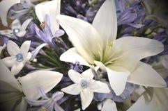 Blåa och vita bröllopblommor royaltyfri foto
