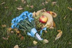Blåa prästkragar och frukter. Royaltyfria Foton