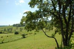 Blåa Ridge Appalachia Arkivbilder