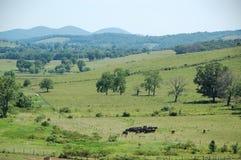 Blåa Ridge Appalachia Arkivfoto