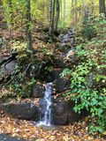 Blåa Ridge Forest Arkivbild