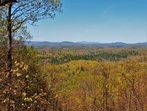 Blåa Ridge Mountains från felik stendelstatspark royaltyfri fotografi