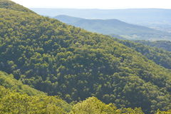 Blåa Ridge Mountains i sommar Royaltyfria Foton