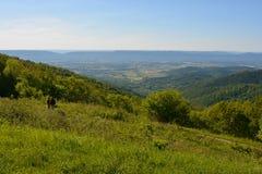 Blåa Ridge Mountains i sommar Fotografering för Bildbyråer