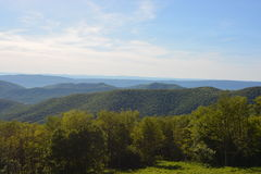 Blåa Ridge Mountains i sommar Arkivbild